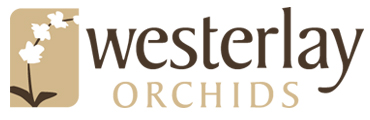 Westerlay Orchids Development Site